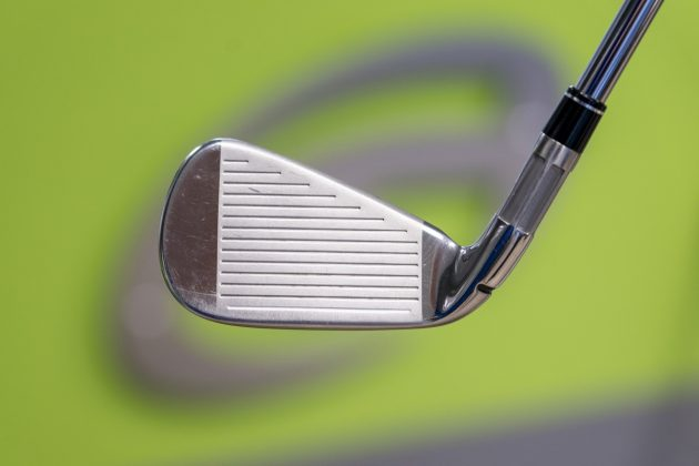 TaylorMade M6- iron face in-hand