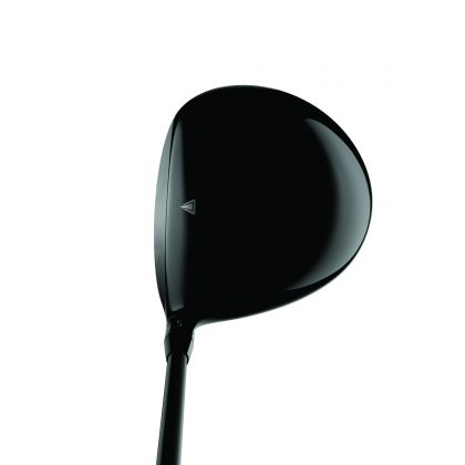 Titleist TS1 driver- crown